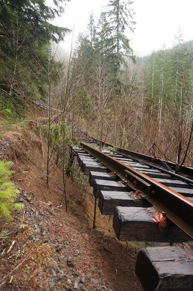salmonberry landslide