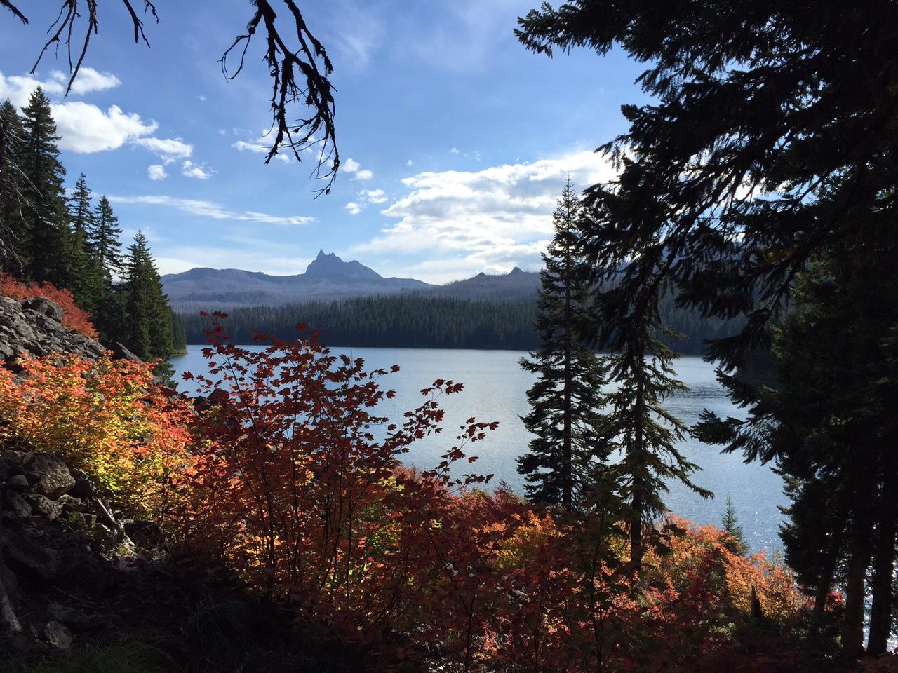 Lake2015A